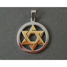 Steel necklace: Golden Star of David in silver circle